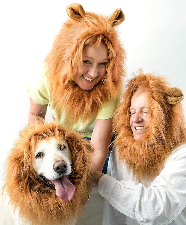 Fancy Space Disfraz de Melena del Rey León – Peluca de león con Cola para Perro Mediano a Grande – Disfraces Divertidos para Cosplay (Rubio)
