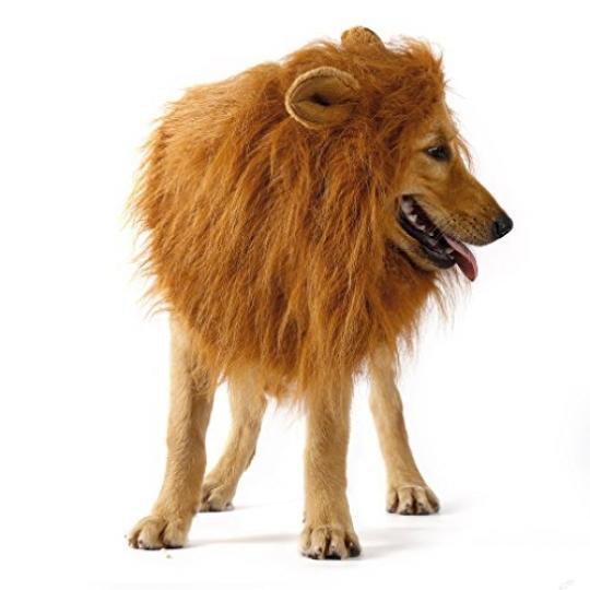 Disfraz-de-Mascota-Perro-Len-Pelucas-Perro-Mascotas-Ropa-Sombrero-Disfraz-Festival-Fiesta-Disfraz-de-Navidad-0